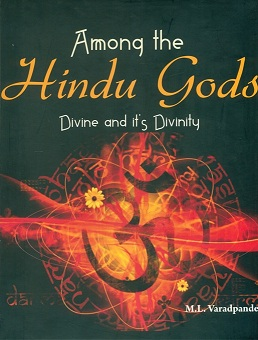 Among the Hindu gods: divine and its divinity